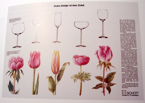 a comparison of flowers and glasses of similar shapes